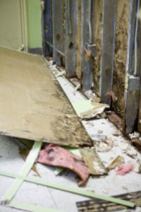 chicago water damage and mold remediation